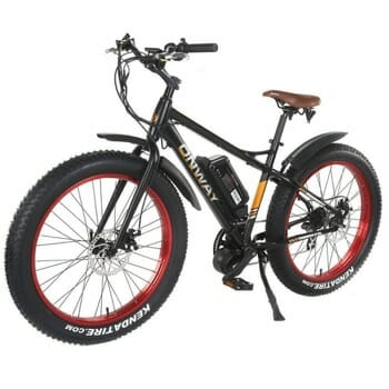 Onway Snow and Mountain Electric Bikes